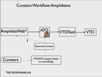AmphibianWorkflow.png